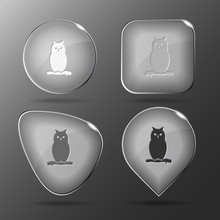 Owl. Glass Buttons. Vector Illustration.