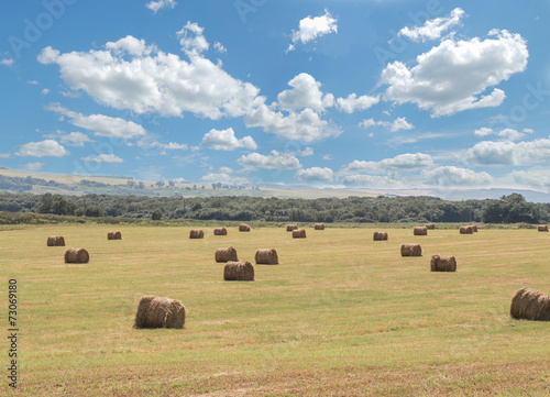Cadres-photo bureau Message inspiré round bales of straw in the meadow