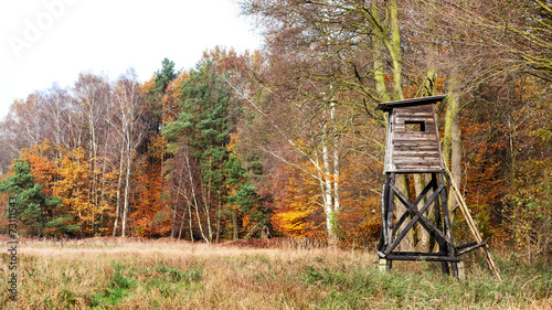 Photo sur Aluminium Chasse Panoramic view of a hunting pulpit in autumn.
