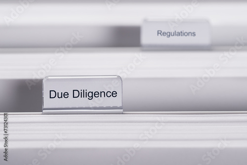 Fotografie, Obraz  Due Diligence And Regulations Folders