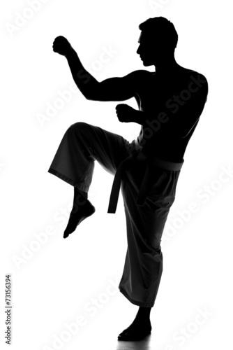 Fotografie, Obraz  Martial arts