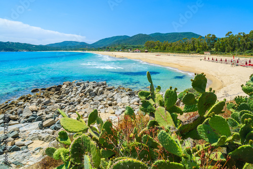 Photo  Cactus plants at Cala Sinzias bay and sea view, Sardinia island