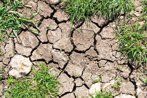 Foto  dry ground