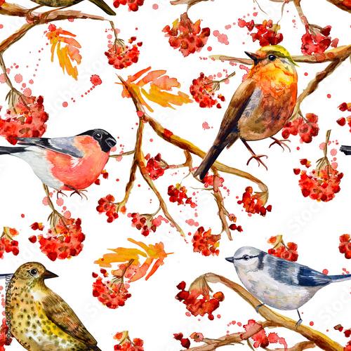 bezszwowych-tekstur-z-cute-ptakow-akwarela