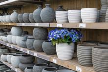Garden Shop With Stone Flowerpots