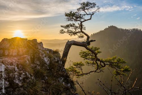 Wschód słońca na Sokolicy - Pieniny