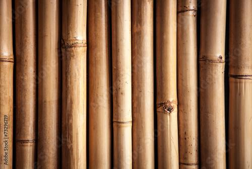Bamboo close up, nice grunge texture