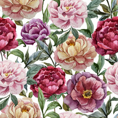 FototapetaBeautiful vector watercolor pattern with peonies on white fon1