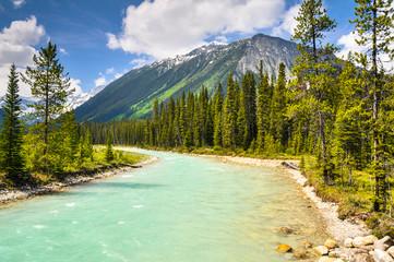 Vermilion river at Kootenay national park in Canada
