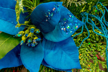 Christmas Decorations - Blue Poinsettia