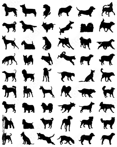 Different black silhouettes of dogs, vector Canvas-taulu
