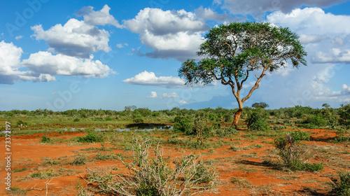 Staande foto Afrika Landschaft in Tsavo, Kenia