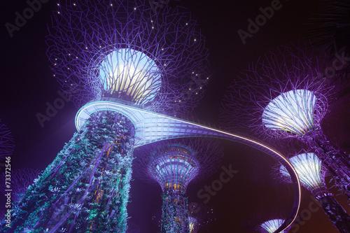 Singapore supertree Canvas Print