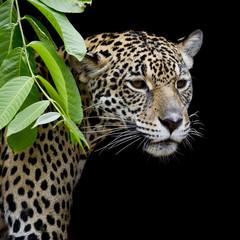 Panel Szklany Pantera Jaguar portrait