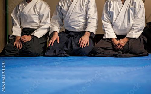 Photo aikido