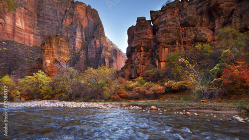 Wall Murals Natural Park Virgin River - Zion National Park