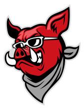 Hog Head Wear A Scarf