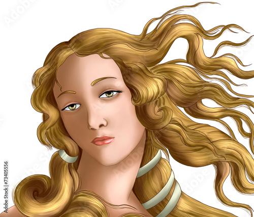 Fotografie, Obraz  Vénus de botticelli