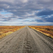 Empty straight gravel road goes to horrizon in Iceland