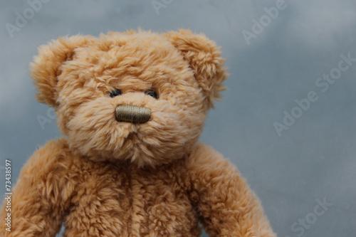 Fotografie, Obraz  Rustic Old Teddy Bear on grey background