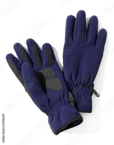 Fotografie, Obraz  blue polar gloves