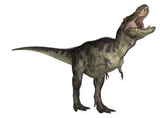 Fototapeta Dinosaur Tyrannosaurus