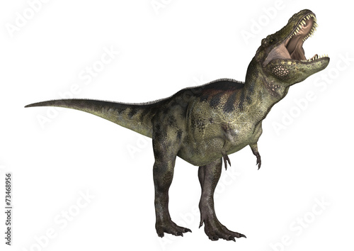 Dinosaur Tyrannosaurus Poster