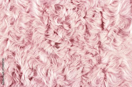 Pink fur pattern Slika na platnu