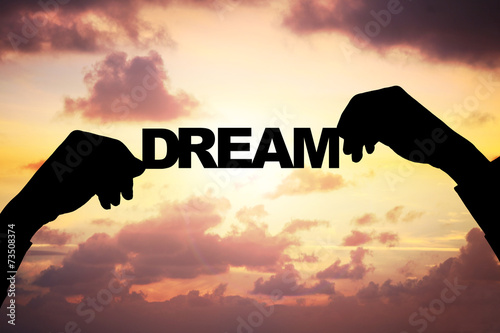 Fototapety, obrazy: Silhouette Businessman's Hands Holding Dream During Sunset