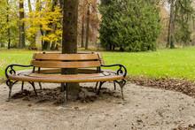 Autumn In Maksimir Park, Bench Around The Tree