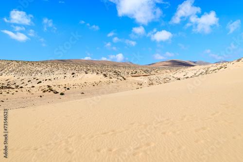 Foto op Aluminium Blauw Sand dune on Sotavento beach, Fuerteventura, Canary Islands