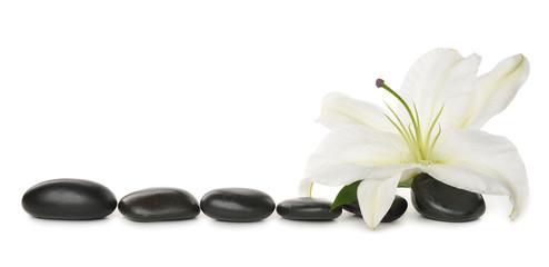 Fototapeta samoprzylepna White lily and stones
