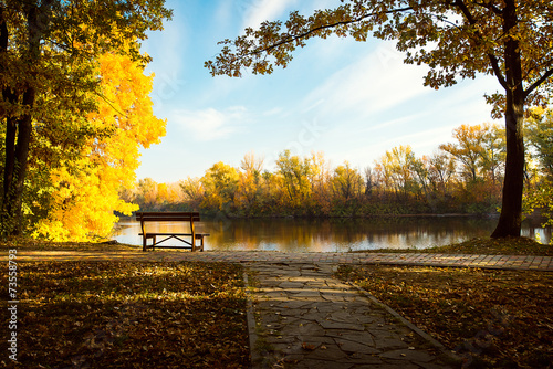 Fotobehang Zwavel geel between autumn trees there is a bench ashore