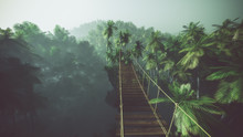 Rope Bridge In Misty Jungle Wi...