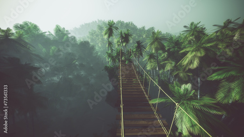 Rope bridge in misty jungle with palms. Backlit. Fototapeta