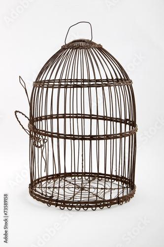 Foto op Aluminium Vogels in kooien jaula antigua