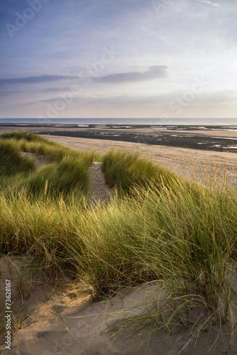 Spoed Foto op Canvas Noordzee Summer evening landscape view over grassy sand dunes on beach