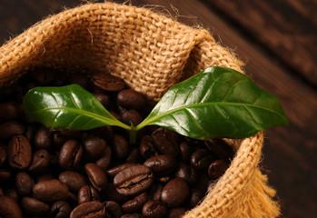 fototapeta kawa w worku z liściem kawowca