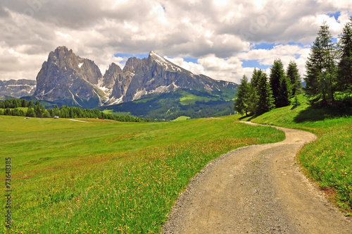 Fototapeta Winding road in Alps