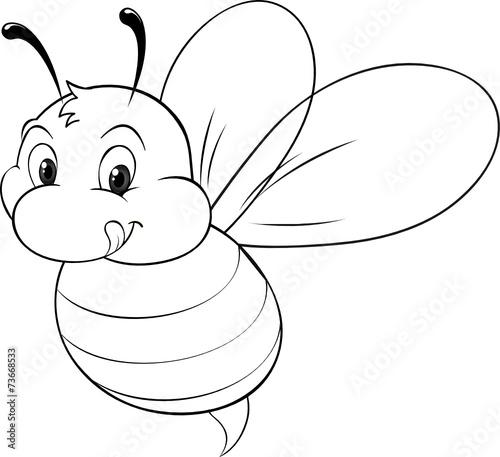fototapeta biene drohne ausmalbild  bee miód pszczoła