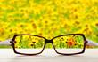Leinwandbild Motiv Vision concept. Eye glasses on wooden table outdoors