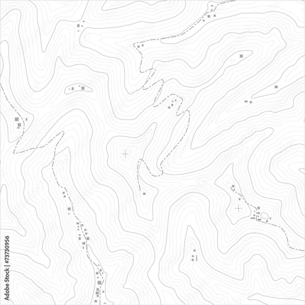 Fototapety, obrazy: Topographic Map Texture