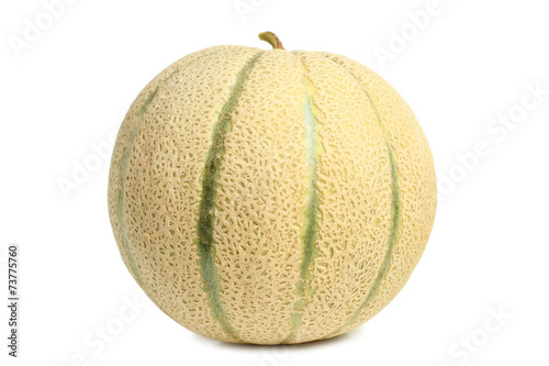 Stampa su Tela Cantaloupe melon