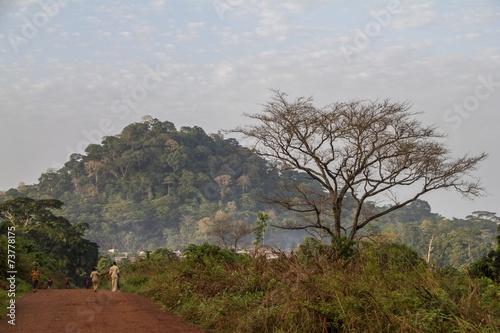 Fotografía  Guinea