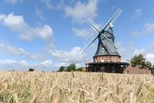 Windmühle Vor Einem Kornfeld ...