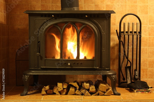 Fire burning in the fireplace Canvas Print