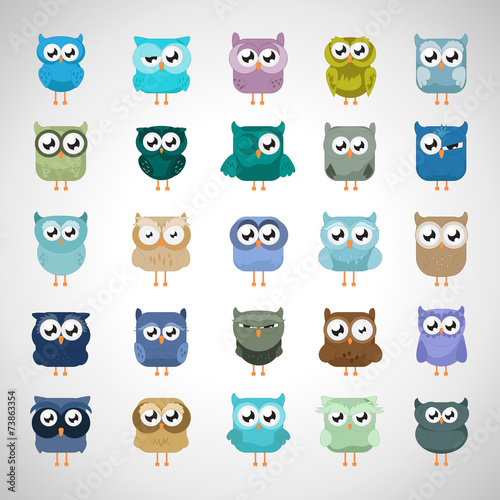 Canvas Prints Owl Set - Isolated On Gray Background