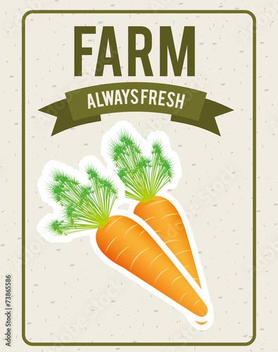 projekt-warzyw