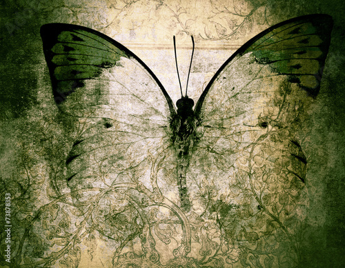 Acrylic Prints Butterflies in Grunge butterfly