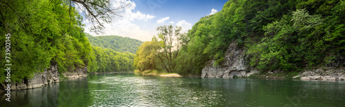 Obraz forest river with stones on shores - fototapety do salonu